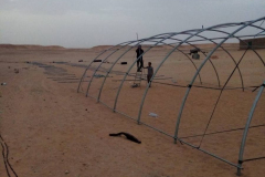 putting-up-the-polytunnel-6