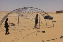 putting-up-the-polytunnel-9